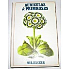 Auriculas and Primroses by W R Hecker