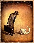 Ankomsten by Shaun Tan