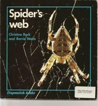 Spider's Web by Christine Back