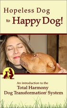 Hopeless Dog to Happy Dog!: An introduction…