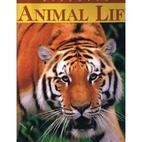 Discover Animal Life by Lynne Hardie…