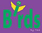 Brids by Tara McClintick