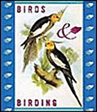 Birds And Birding by Randy Burgess