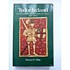 Tudor Ireland: Crown, Community and the…