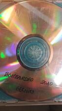 Bombardeo 2010 Gernika