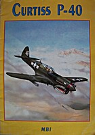 Curtiss P-40 by Vlastimil Ehrman