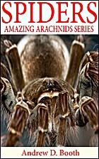 Spiders: Amazing Pictures and Fun Facts on…