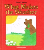 What Makes The Weather by Janet Craig