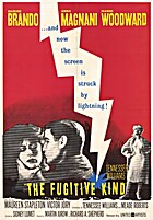 The Fugitive Kind [movie] by Sidney Lumet