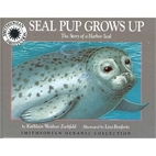 Seal Pup Grows Up: The Story of a Harbor…