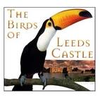 The Birds of Leeds Castle by Laura Gardner