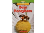 Science Vocabulary Readers: Busy Honeybees…