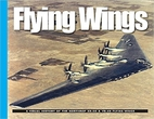 Flying Wings by David Doyle