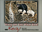 Walk on the Wild Side with Keay Family…
