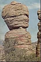 The Natural History of Chiricahua National…