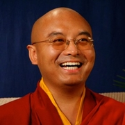 Author photo. From Rinpoche's official website.