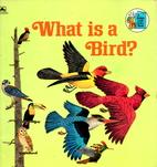 What is a Bird? by Jenifer W. Day
