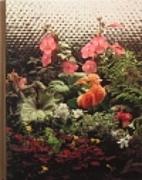 Gardening Under Lights by Wendy B. Murphy