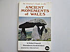 An Amateur's Guide to the Ancient Monuments…