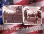 The American Appaloosa anthology by Palmer J…