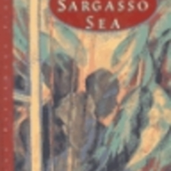 jean rhys wide sargasso sea pdf