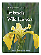 A Beginner's Guide to Ireland's Wild Flowers…