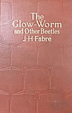 The glow-worm and other beetles by…