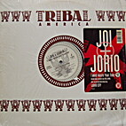I Won't Waste Your Time '95 by Joi and Jorio…