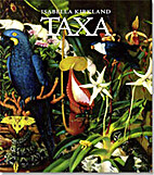 Taxa by Isabella Kirkland