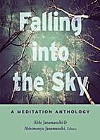 Falling into the Sky by Abhi Janamanchi