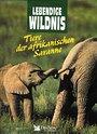 Lebendige Wildnis. Tiere der afrikanischen Savanne - Verlag Das Beste