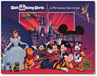 Walt Disney World ... a Pictorial Souvenir…