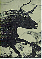 Four hundred centuries of cave art by Henri…