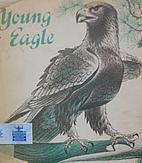 Young Eagle by Berniece Freschet