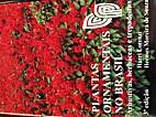Plantas Ornamentais No Brasil by Harri…