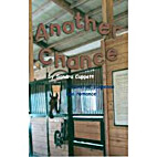 Another Chance by Sandra Cuppett
