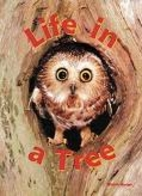 Life in a Tree by Melvin Berger