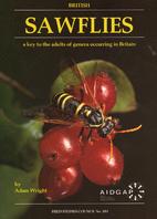 British Sawflies: a key to adults of genera…