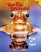 Your Big Backyard - Frog or Fish? - March…