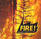 Fire in Yellowstone: A True Adventure by…