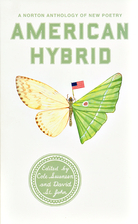 American Hybrid: A Norton Anthology of New…