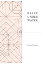 Brief Under Water by Cyrus Console