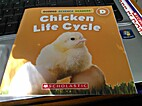 Chicken Life Cycle by Lydia Carlin