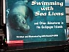 Swimming With Sea Lions : And Other…