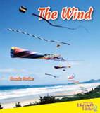 The Wind by Brenda Parkes