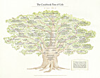 The Cookbook Tree of Life by Anne Willan