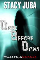Dark Before Dawn by Stacy Juba