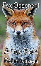 Fox Opponent (Fox Shorts 3) by Robin Roseau