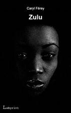 Zulu by Caryl Ferey