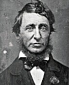 Thoreau's Harvard Years by Kenneth Walter…